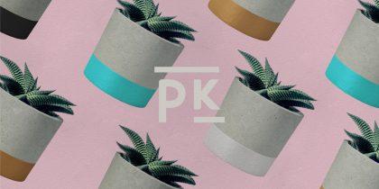Pinne Kits